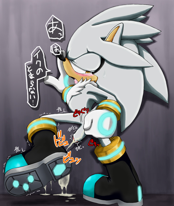silver the hedgehog porn